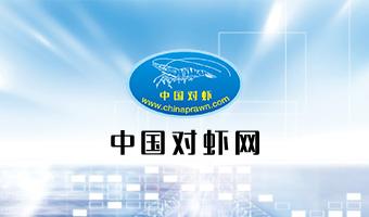 中国对虾网
